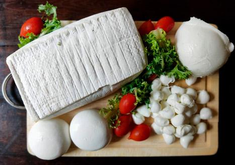 formaggi di bufala am formaggi